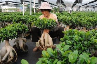 天津:农民自主创业最高可申请30万元担保贷款