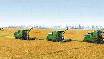 农业部:预计今年粮食产量保持在12000亿斤以上