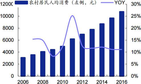 2006-2016年我国农村居民人均消费及增速