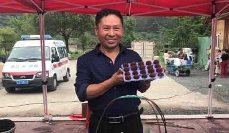 """浙江仙居""""因梅而富"""" 杨梅每年为梅农增收超亿元"""