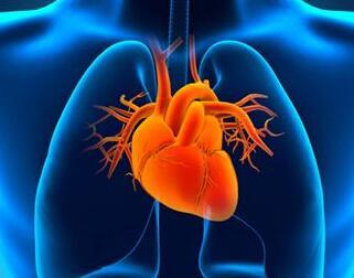 提升心血管疾病防治水平 支撑健康中国战略发展
