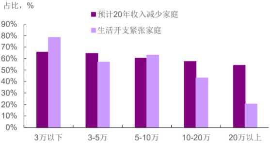 2020年中国家庭收入及消费变动预期(分收入组)