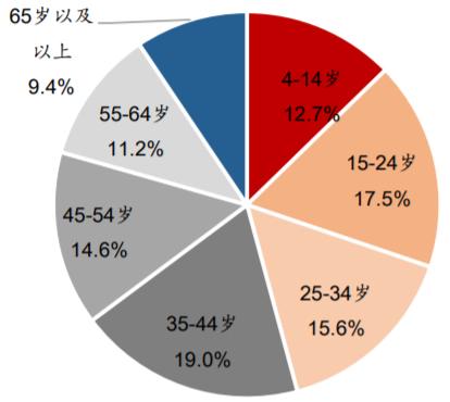 2017年中国电视观众年龄结构