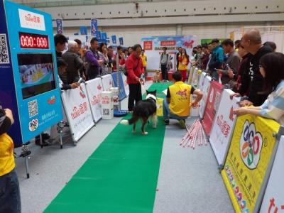 2019第八届中国(广州)国际宠物产业博览会