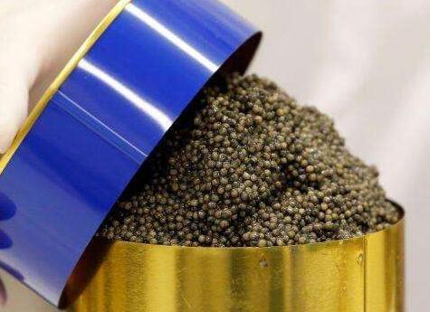 在千岛湖生产的卡露伽鱼子酱出现在巴黎26家米其林三星餐厅中21家的