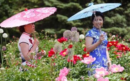 """加拿大奥沙瓦牡丹节被冠名""""中国传统文化周"""""""