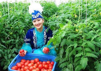 农业对外合作充分体现互利共赢