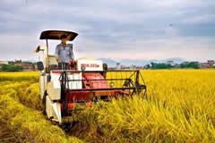 信息化与农业现代化融合全面提速