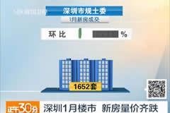 深圳1月楼市 新房量价齐跌