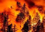 美国西海岸山火失控