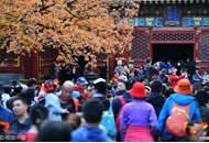 北京香山10万人赏红叶 公园首发预警