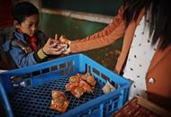 爱加餐十周年 用心做好留守儿童的每一顿早餐