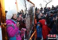 黑龙江冬捕新体验 万斤鲜鱼一网收